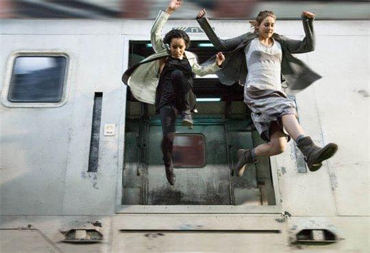 Divergent Photo 11 - Large