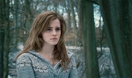 Harry Potter and the Deathly Hallows: Part 1 Photo 40 - Large