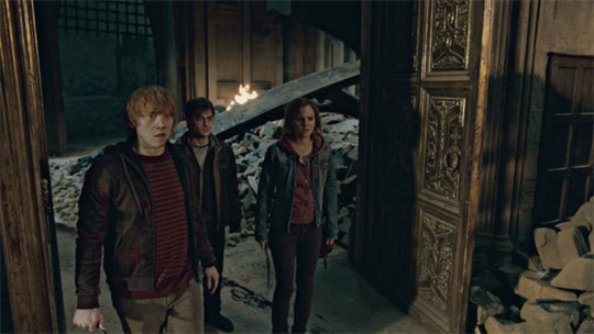 Harry Potter and the Deathly Hallows: Part 2 Photo 22 - Large
