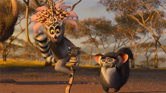 Madagascar: Escape 2 Africa Photo 15 of 25