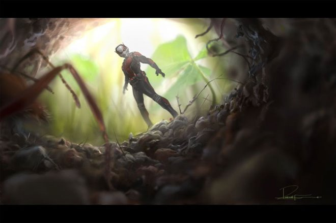 Ant-Man Photo 3 - Large