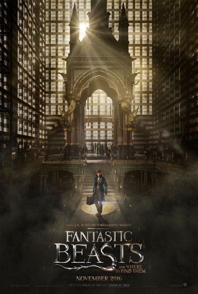 Fantastic Beasts and Where to Find Them Photo 44 - Large