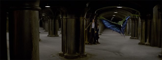 Fantastic Beasts and Where to Find Them Photo 32 - Large