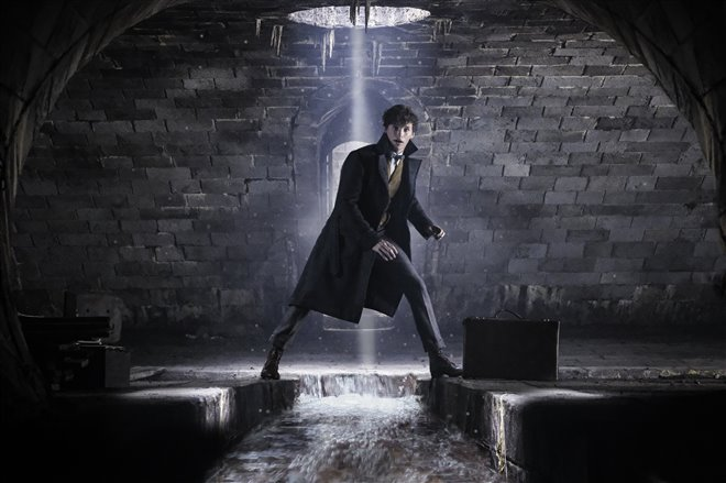Fantastic Beasts: The Crimes of Grindelwald Photo 1 - Large