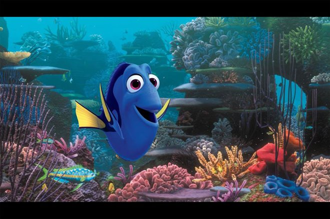 Finding Dory Photo 1 - Large