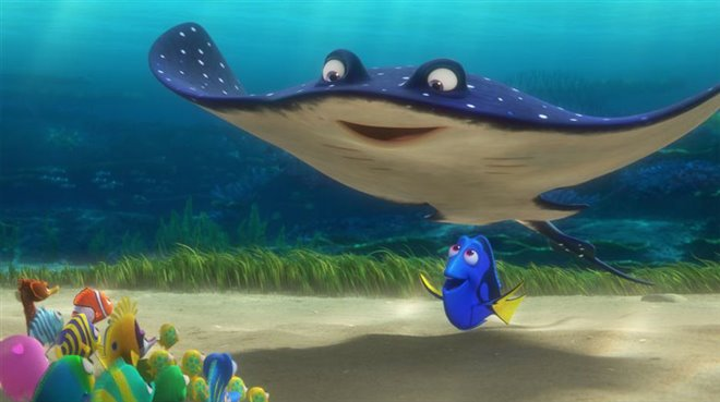 Finding Dory Photo 20 - Large