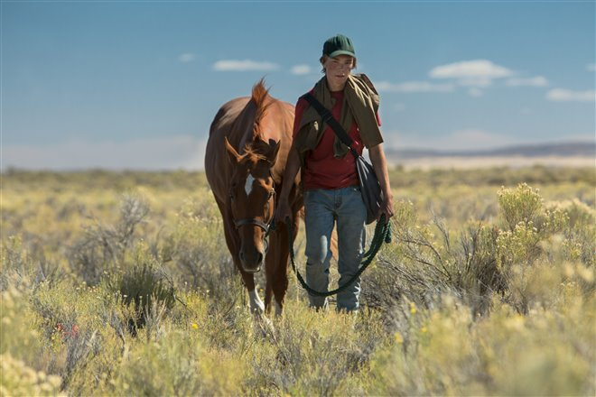 Lean on Pete Photo 12 - Large