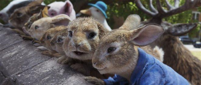 Peter Rabbit 2: The Runaway Photo 3 - Large
