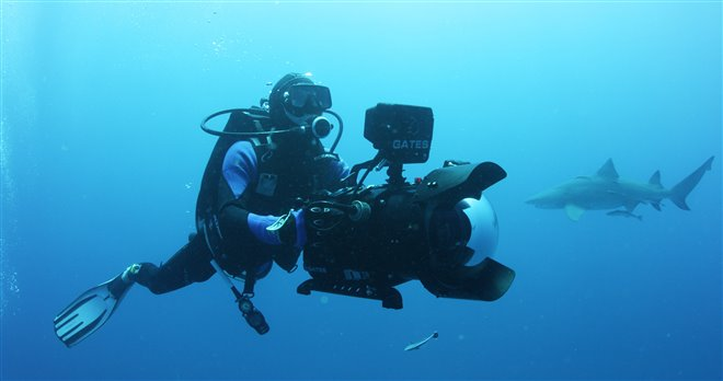 Sharkwater Extinction Photo 1 - Large