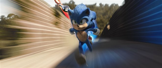 Sonic the Hedgehog Photo 9 - Large