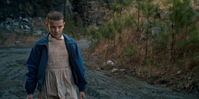 Stranger Things (Netflix) Photo 1 - Large