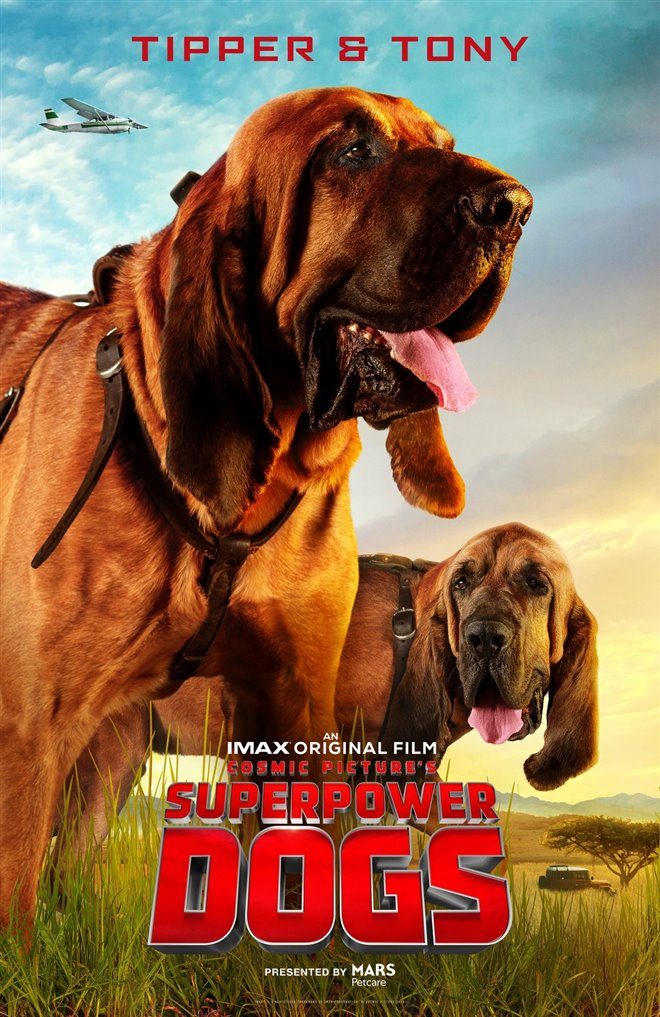 Superpower Dogs Photo 3 - Large