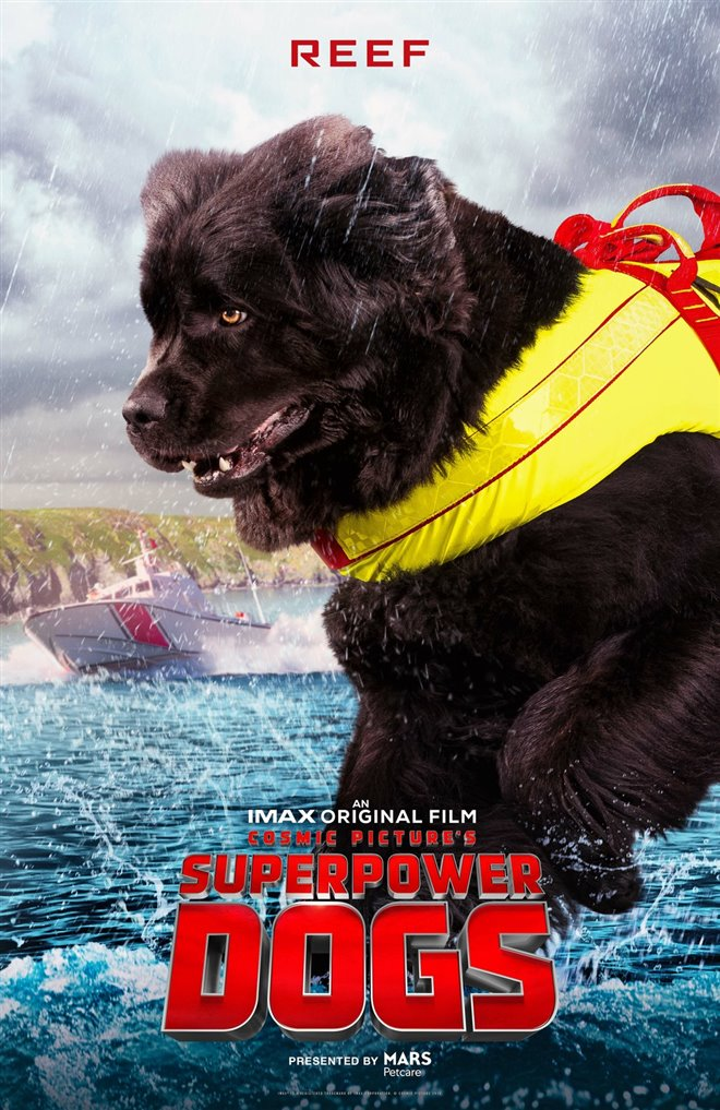 Superpower Dogs Photo 5 - Large