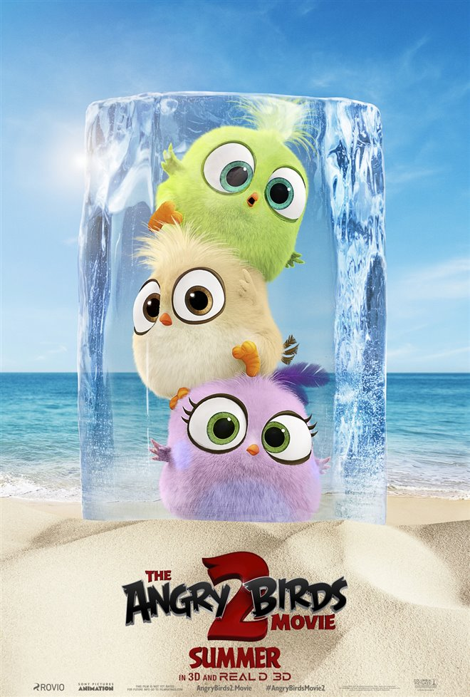 The Angry Birds Movie 2 Photo 38 - Large
