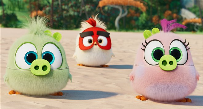 The Angry Birds Movie 2 Photo 7 - Large