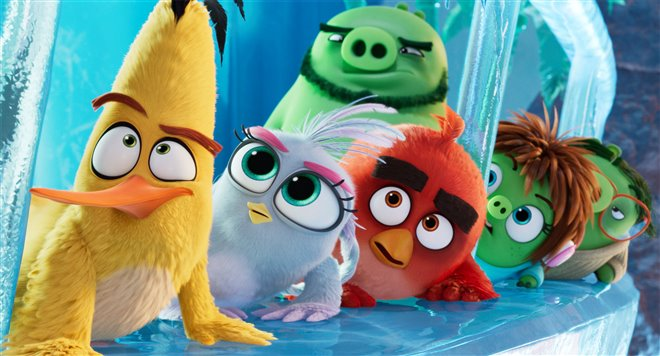 The Angry Birds Movie 2 Photo 9 - Large