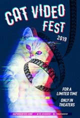 CatVideoFest 2016 co-presented with Alley Cat Allies Large Poster