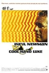Cool Hand Luke Movie Poster