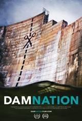 DamNation Movie Poster