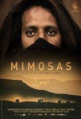Las Mimosas Movie Poster