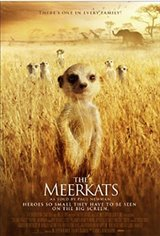 Meerkats Movie Poster