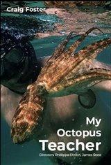 My Octopus Teacher (Netflix) Movie Poster
