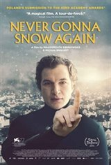 Never Gonna Snow Again Movie Poster