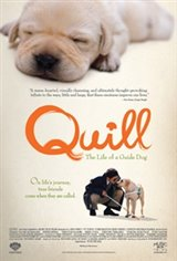 Quill: The Life of a Guide Dog Movie Poster