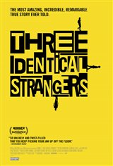 Three Identical Strangers Movie Poster