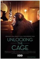 Unlocking the Cage Large Poster
