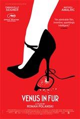 Venus in Fur Movie Poster