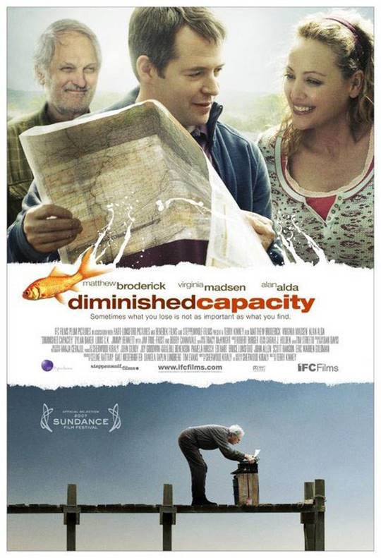 Diminished Capacity Large Poster