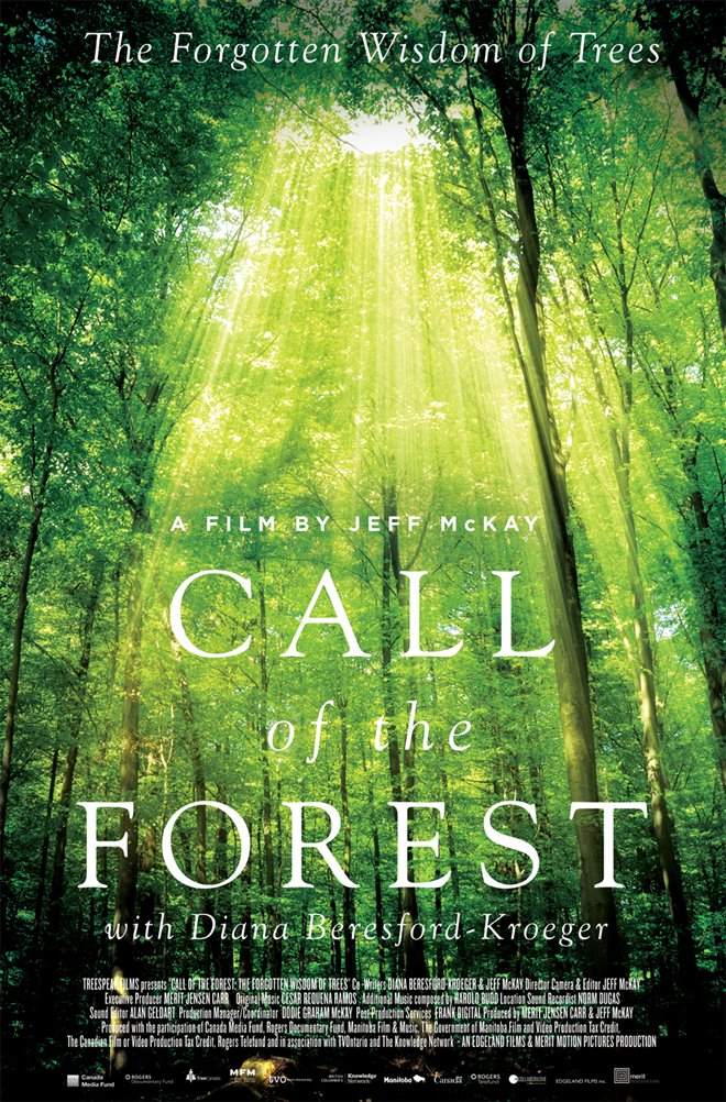 Call of the Forest: The Forgotten Wisdom of Trees Large Poster