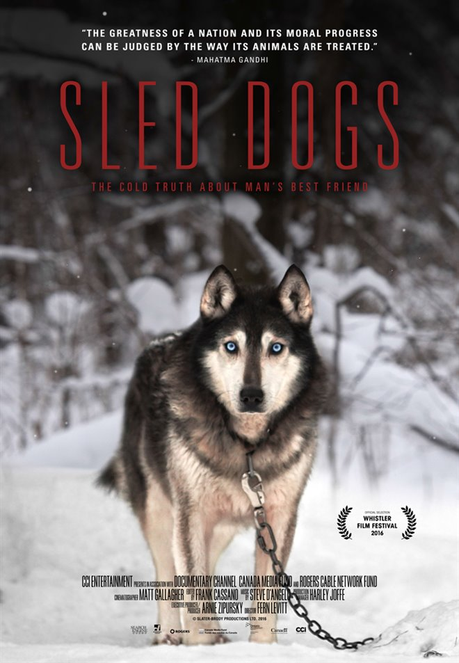 Sled Dogs Large Poster